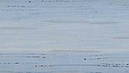 Pearl Grey - Water Based