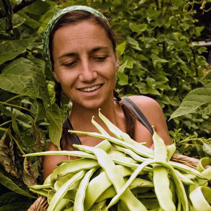 Olivia Tincani, Adviser