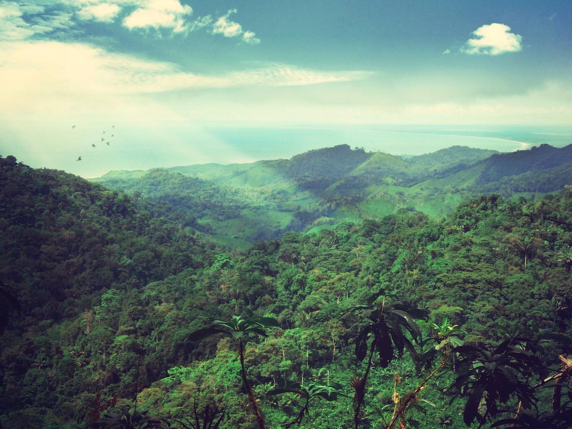 view from mountain peak.jpg