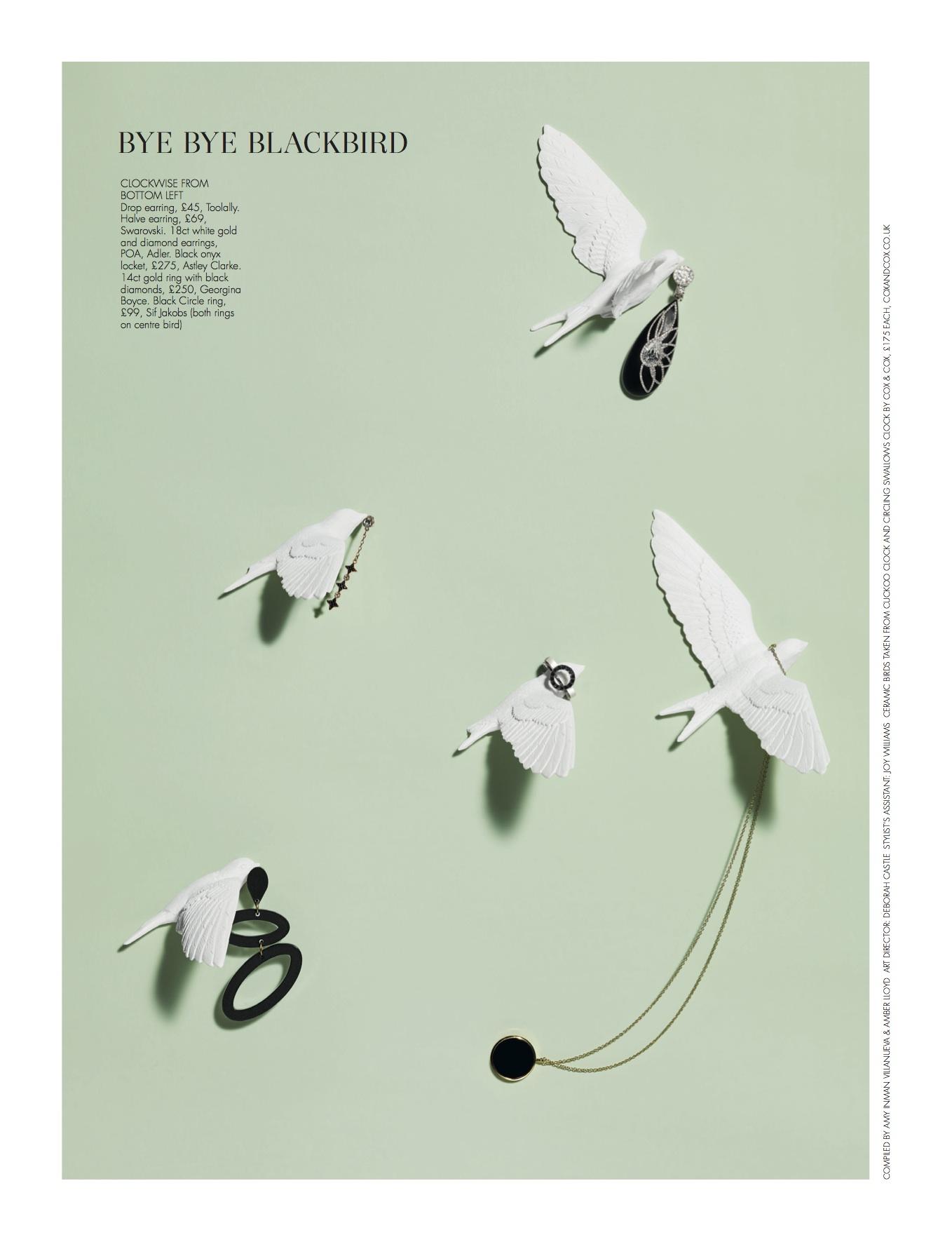50-54_JEWLLERY SPECIAL blackbird.jpg