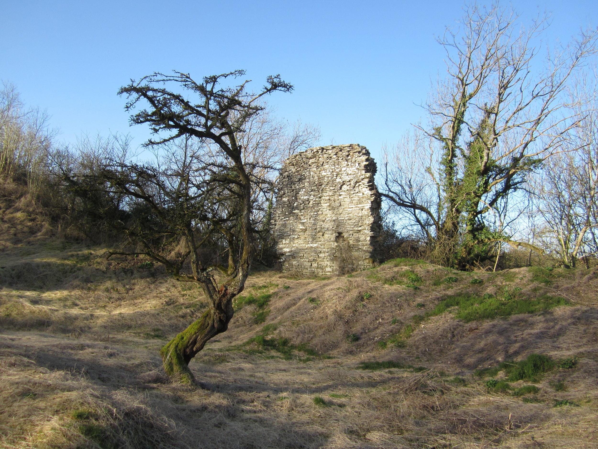 The site of Huntington Castle