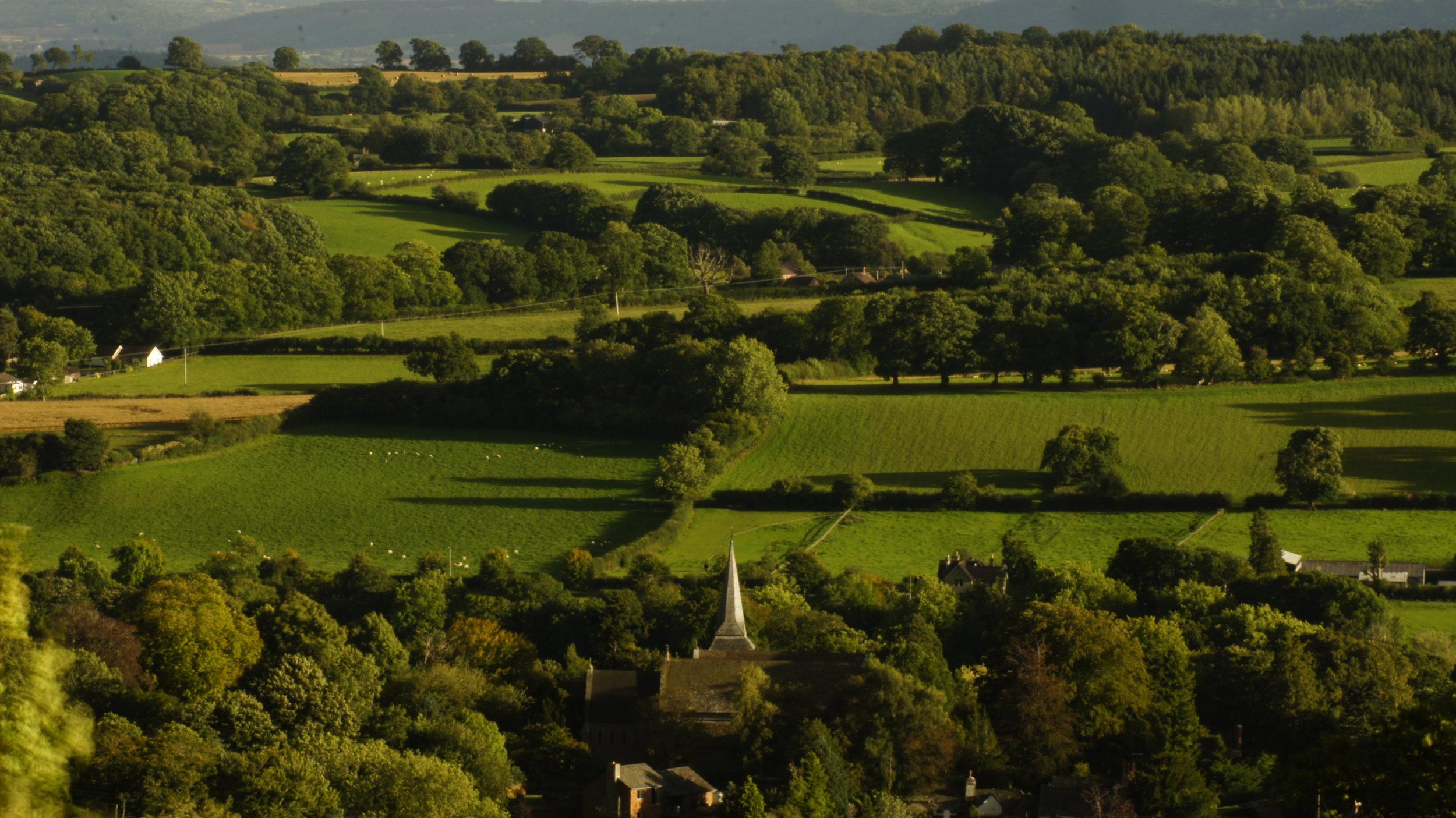 Kington St Mary's Bradnor Views 16-9-16 0248.JPG