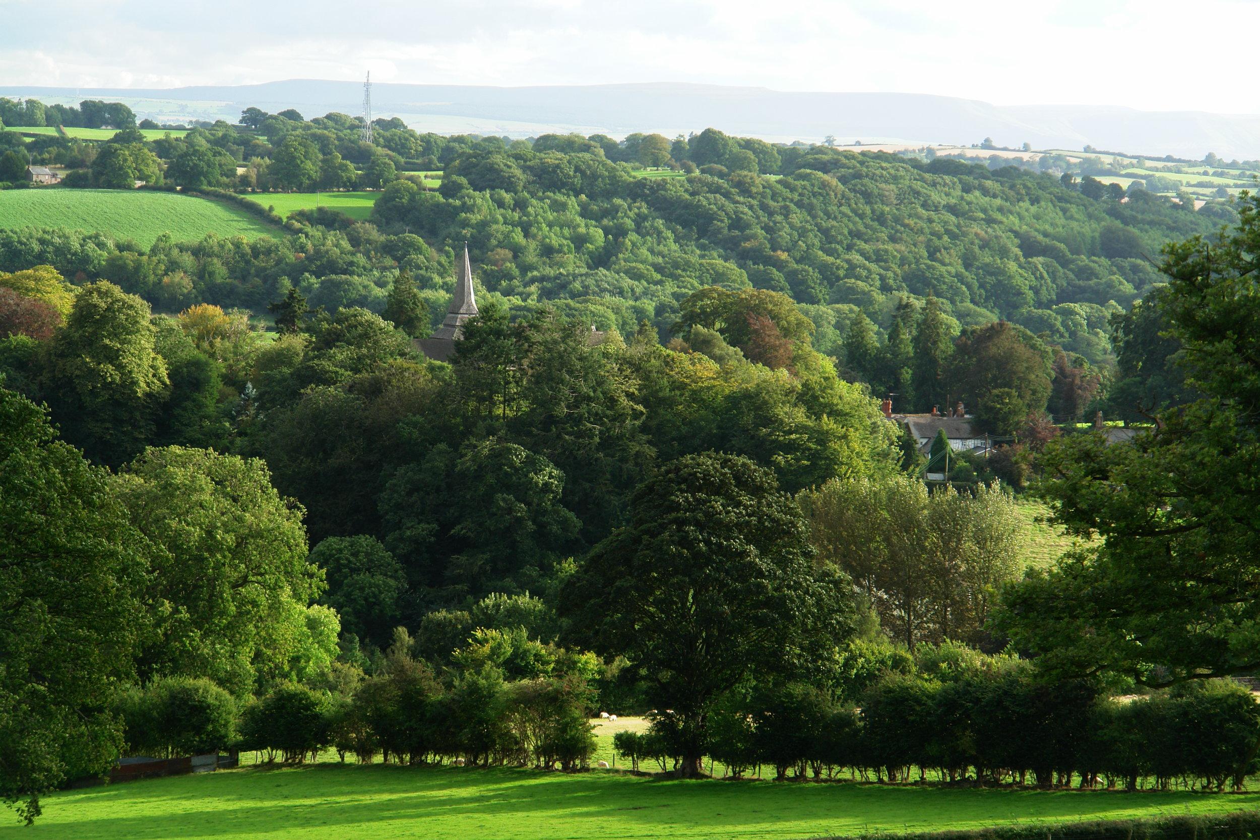 Kington St Mary's Bradnor Views 16-9-16 014.JPG