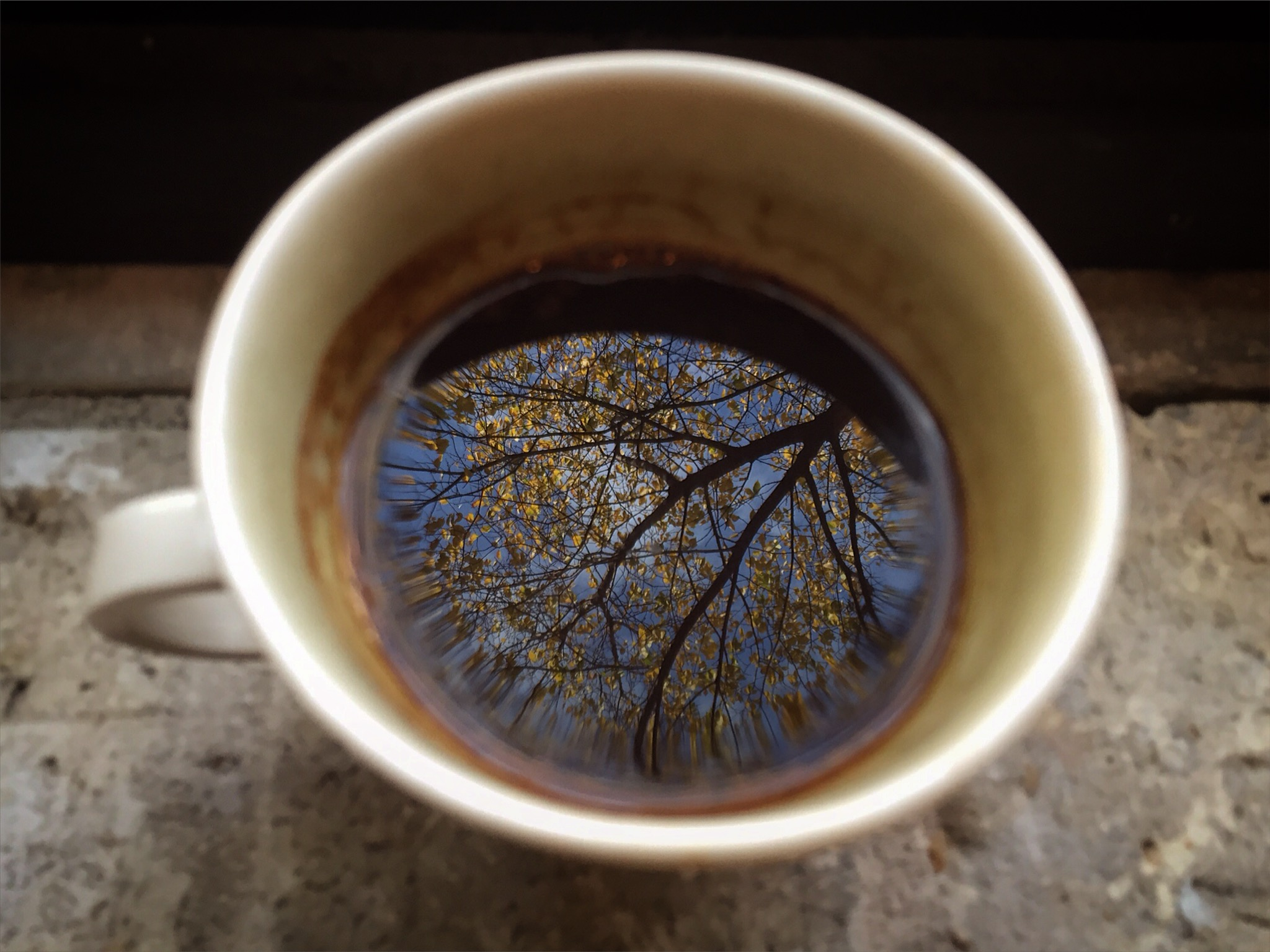Nothing beats a warm cup of coffee on a cool autumn morning. (shot on iphone)