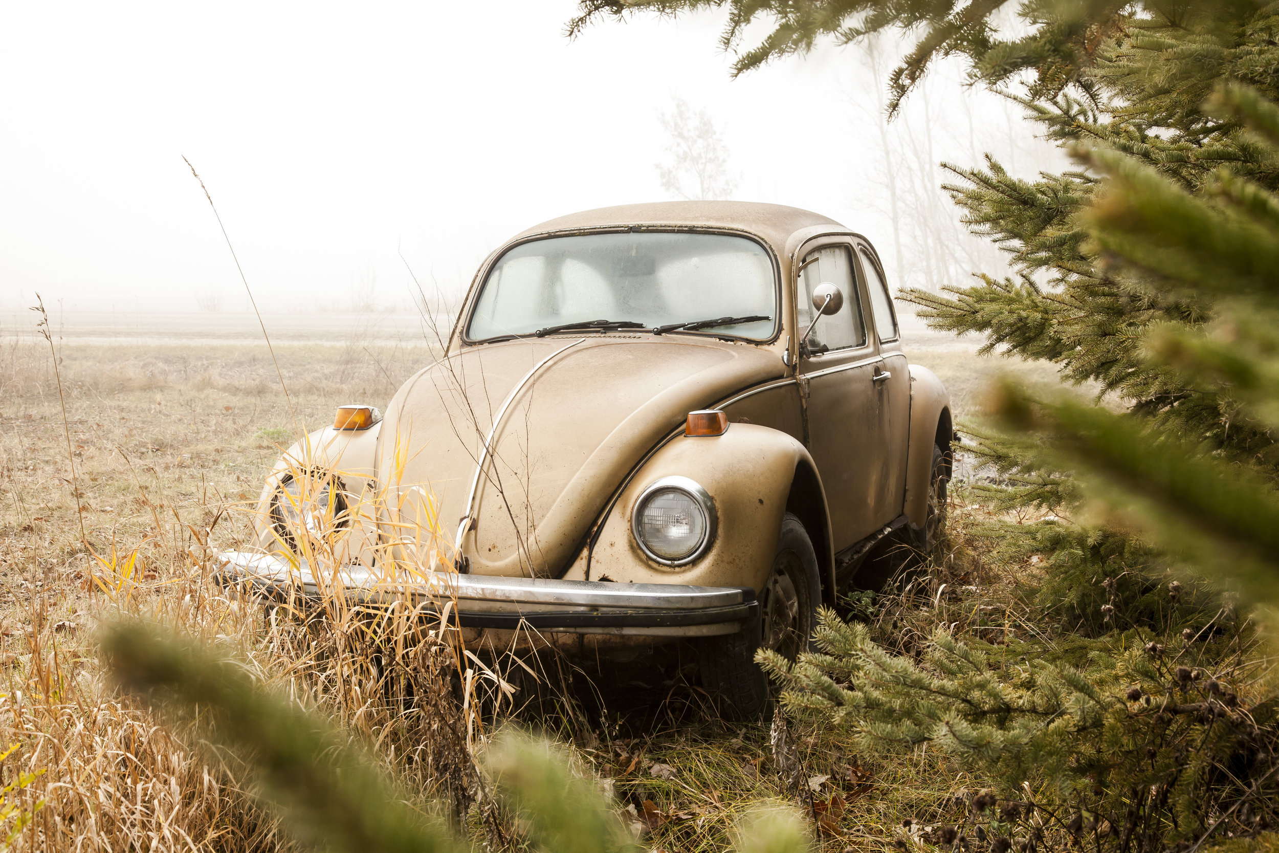 VW_GAGE_FLETHCER_4.jpg
