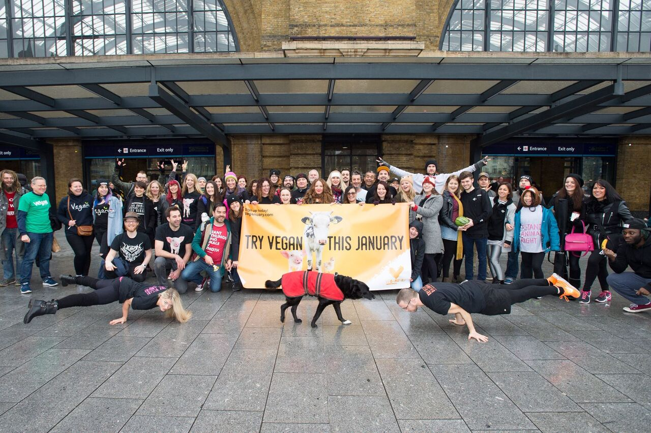 Veganuary launching their 2016/17 campaign last year
