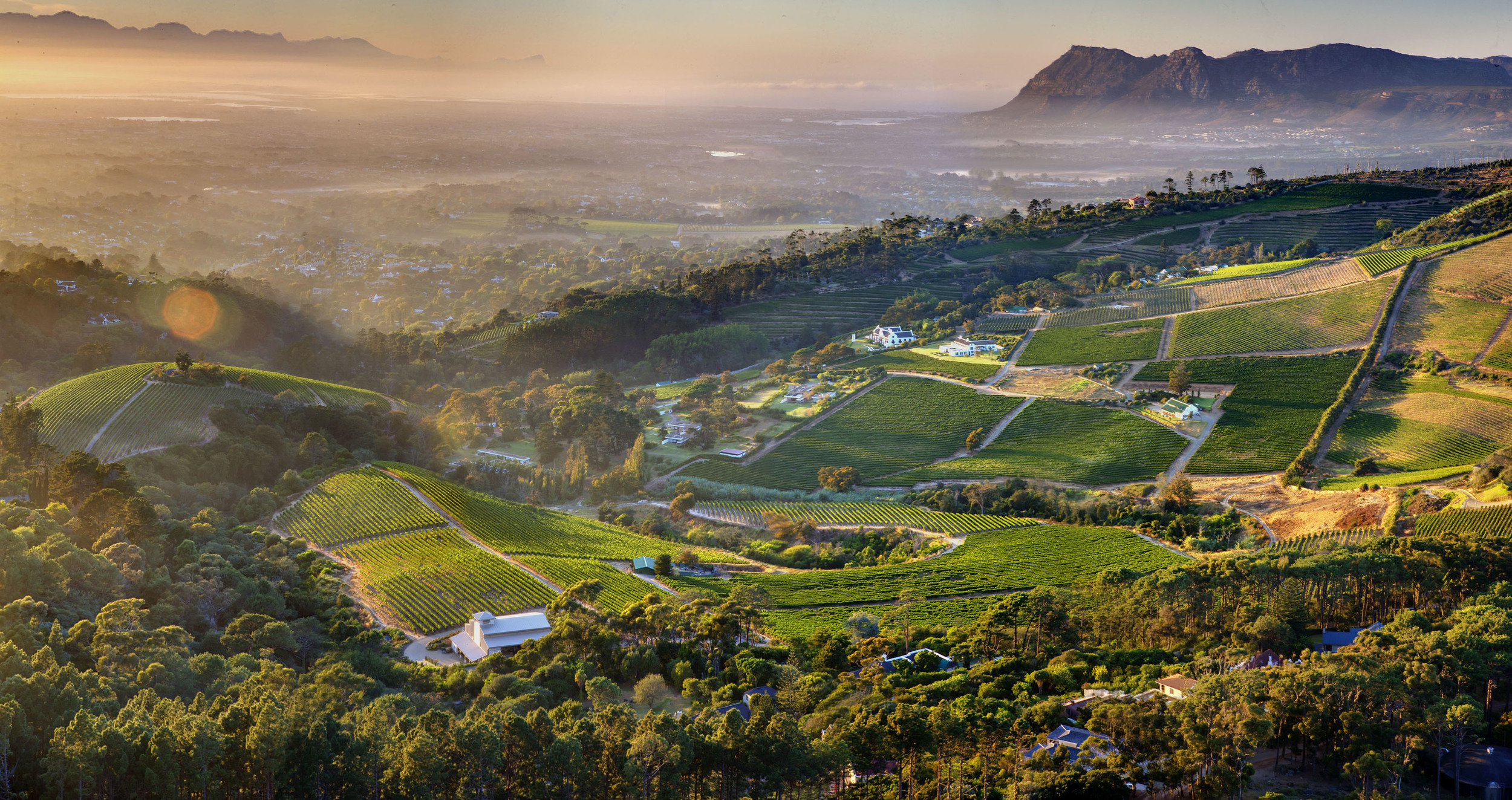 Constantia Valley.jpeg