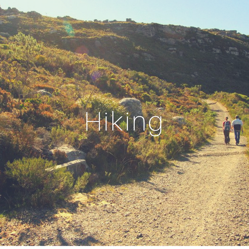 """- The Constantia Valley is our own little piece of heaven. Nestled under the Constantiaberg range of Table Mountain, it stretches down through the vineyards of the beautiful Constantia Wine Route to the sandy beaches of Muizenberg and from there, just a short drive up """"Ou Kaapse Weg"""" to the Silvermine Nature Reserve. There are a variety of breathtaking hiking spots and walking trails in the area, ranging from short easy routes to the more challenging whole day adventures."""