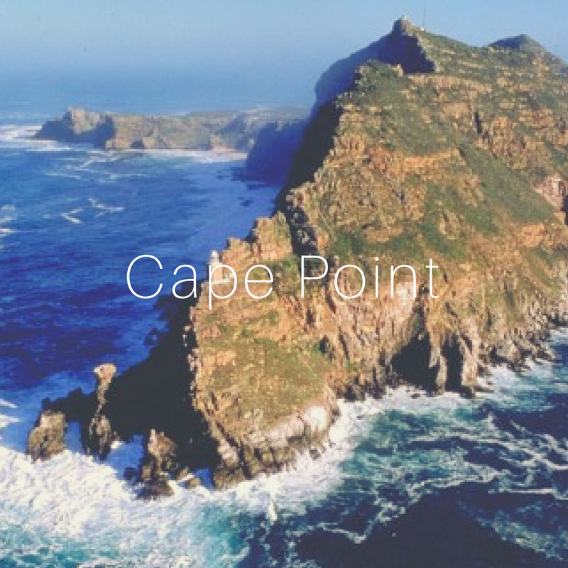- Cape Point is a must see for all visitors to our shores. Follow the road from Muizenberg all the way through Simon's town and down to the southerly tip of Cape Point. The Cape Point Nature Reserve explodes with natural fauna and flora, and the views are breathtaking! There is also a lovely restaurant and a number of viewpoints to be enjoyed. In September the whales come to visit. From Muizenberg, take a scenic drive to Kalk Bay or Simon's town and enjoy the rich history of the small towns, offering much reward for antique and craft enthusiasts.