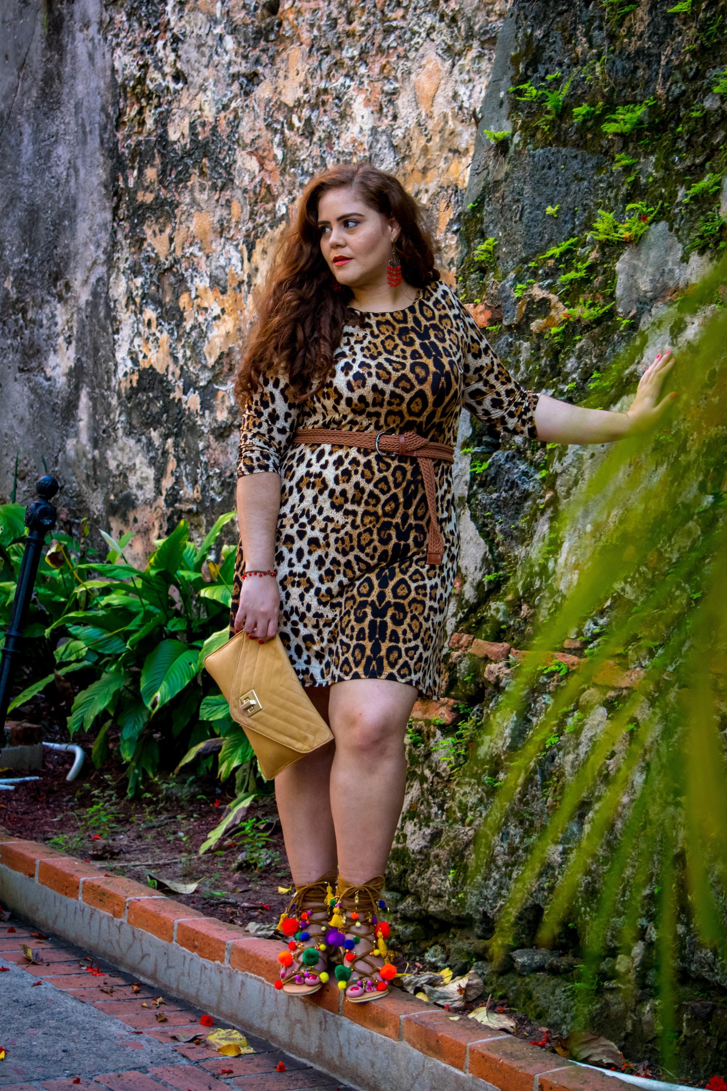 Carla Nicole Photography