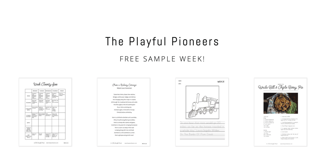 day in the life of playful pioneers.png