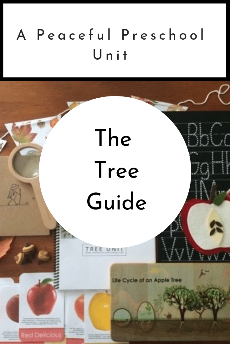 The Peaceful Preschool: Tree Guide  includes four weekly grids with activities to continue the work began in  The Peaceful Preschool.  Your   3-5 year old child will continue developing large and fine motor skills, phonics and counting skills, and their love for literature through the stories and projects included in  The Peaceful Preschool: Tree Guide.