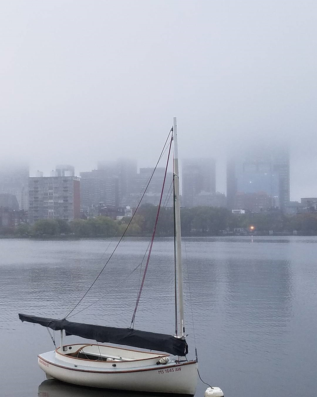 oct_22_foggy.jpg
