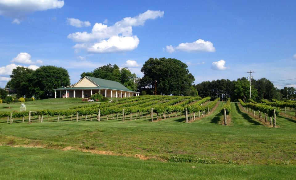Dennis Vineyards<a href=dennis-vineyards>→</a><strong>A Place in the Vineyard</strong>