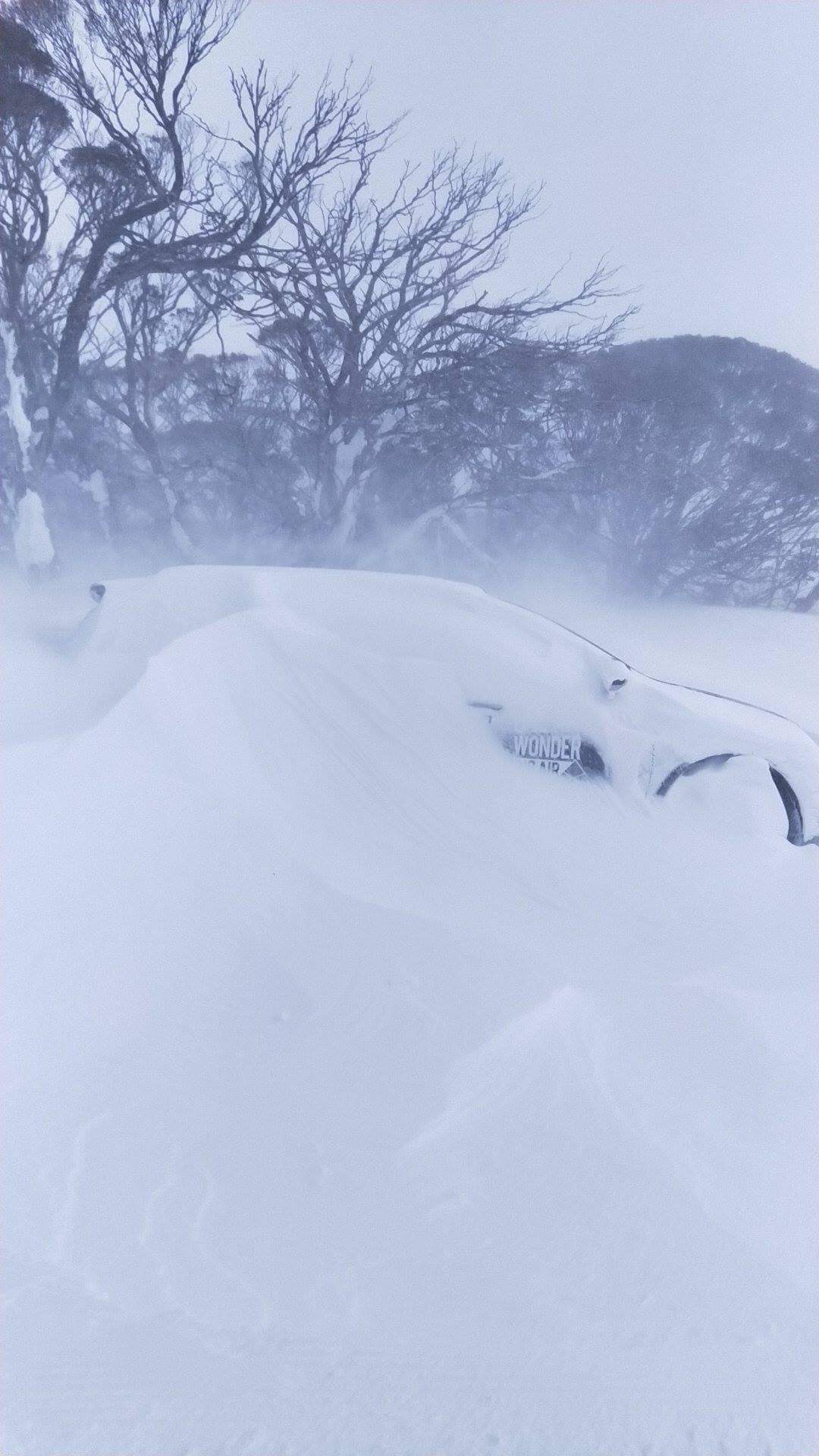 The one hit wonder car slowly vanishing into the snowstorm.