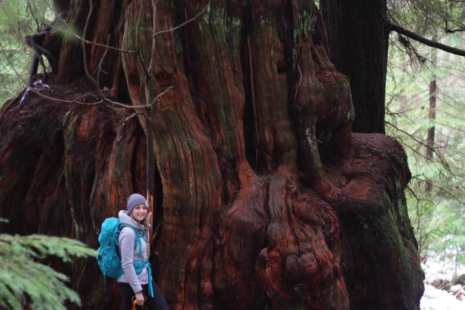 Sam found a massive tree trunk! (pretty hard to miss it hahaha)