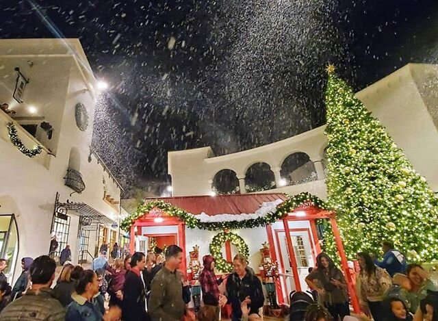 🌲Christmas might be over, but the snow keeps coming at Paseo Nuevo❄️Come out now through New Year's Eve and experience a snowy California☃️ Every night at 6 & 7pm⏰ Don't miss it!