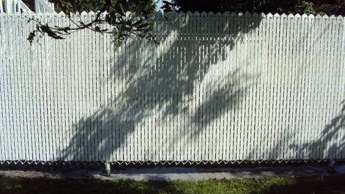 Frost Fence - after