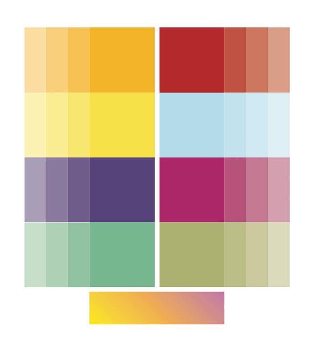 @bodydelsolmedicalspa proposed color palette 🌻🌹🌎🍇🥝