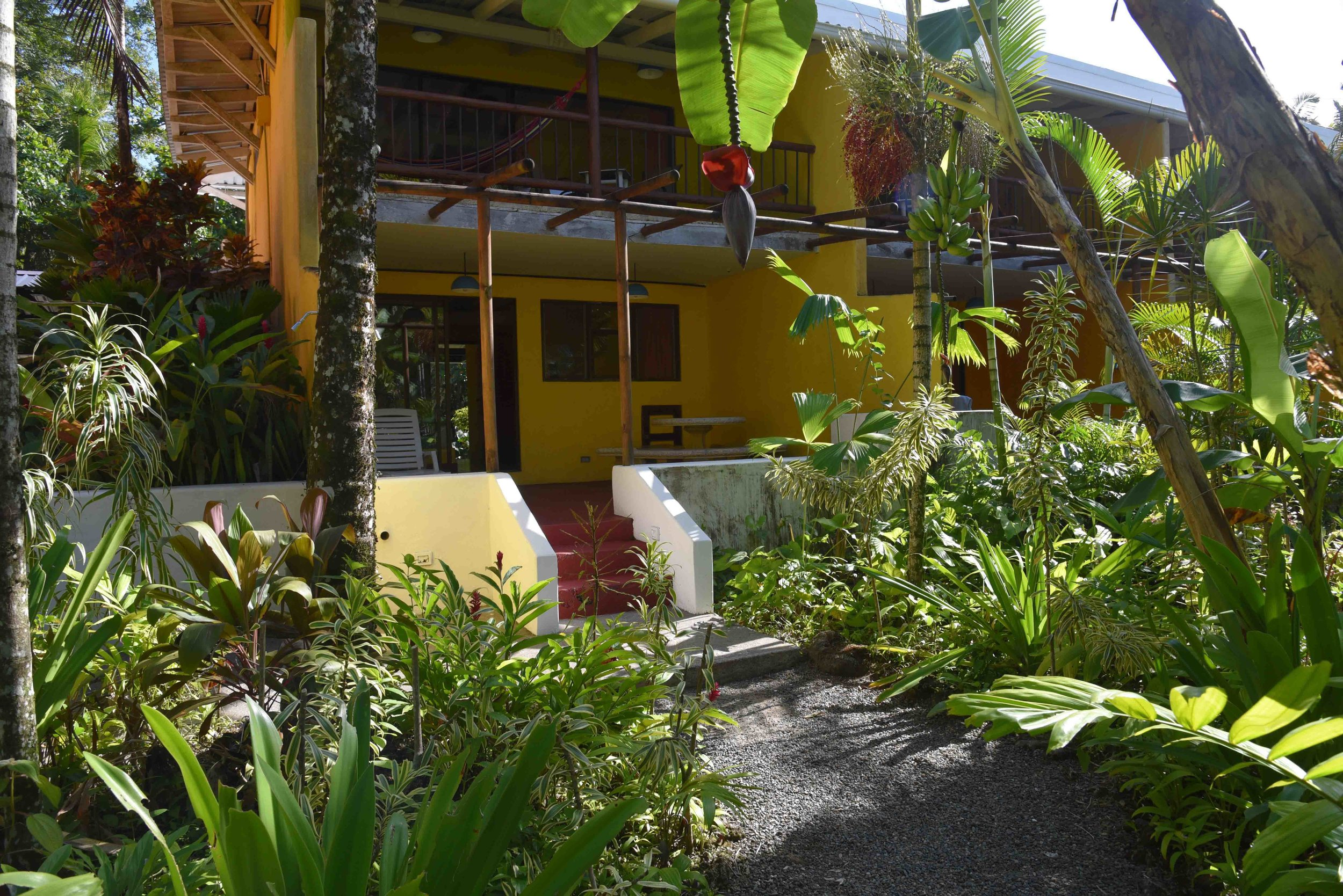 VILLAS DEL CARIBE COCLES PUERTO VIEJO  BREATHWORK YOGA RETREAT  MEG WILLIAMS  LISA D. (C)-6.jpg