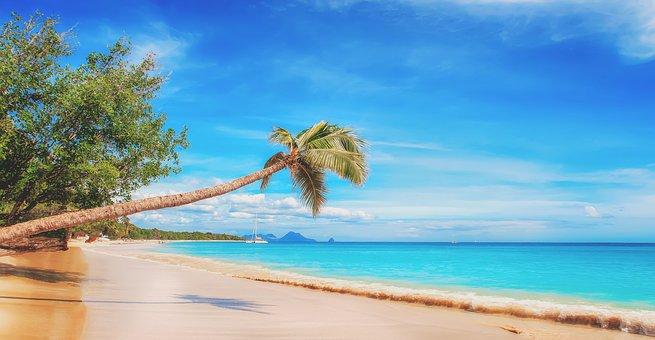 beach-2528635__340.jpg