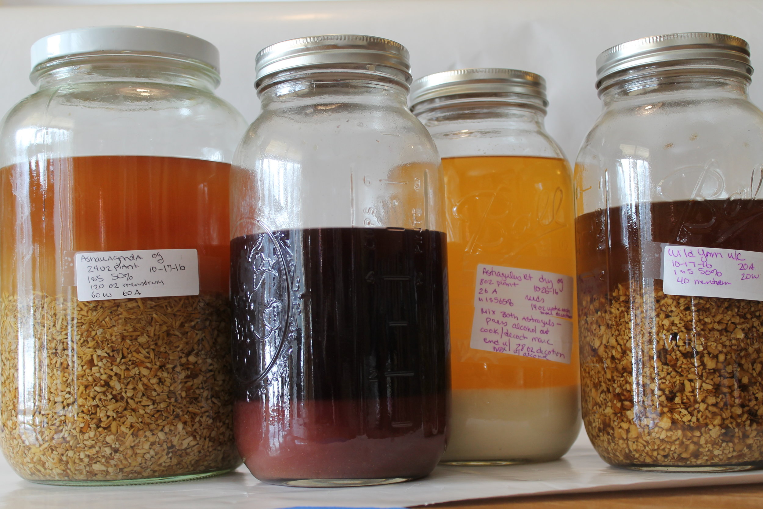 Look at all the different colors of the tinctures. From left to right Ashwagandha, Elderberry, Astragulus, and Wild Yam.