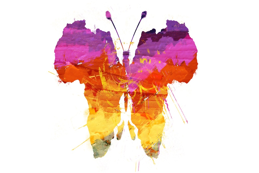 africas-out-butterfly.jpg