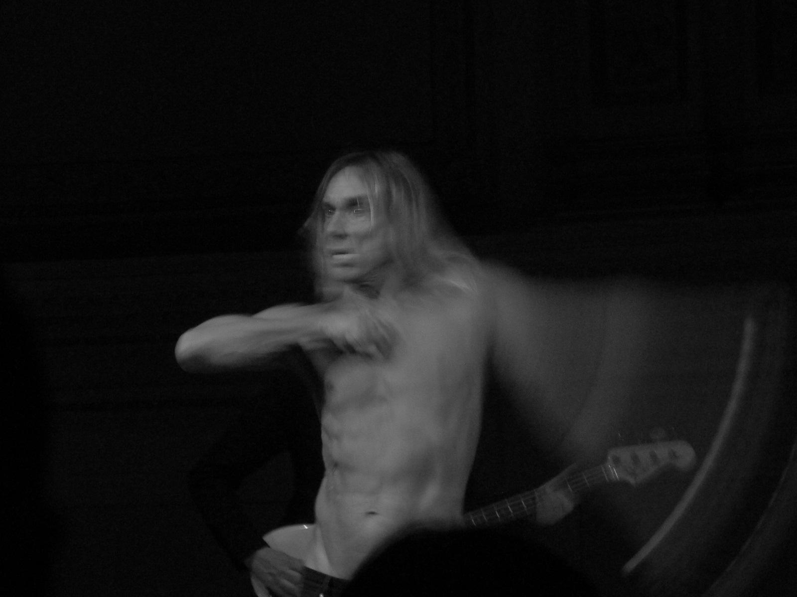 iggy pop, 2008