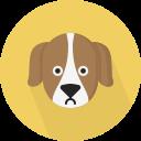 Pet License Application