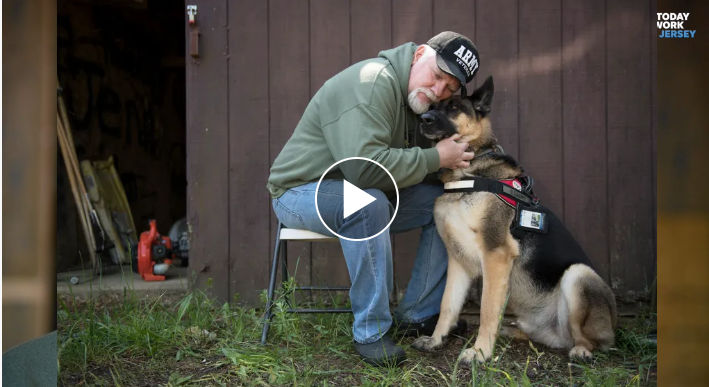 https://www.rachaelrayshow.com/articles/we-surprise-an-army-veteran-who-rescues-trains-provides-service-dogs-free-of-charge-to