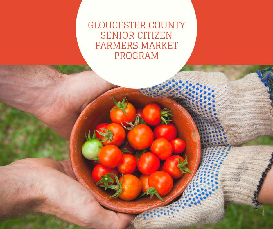 Gloucester County senior citizen farmers market program.png