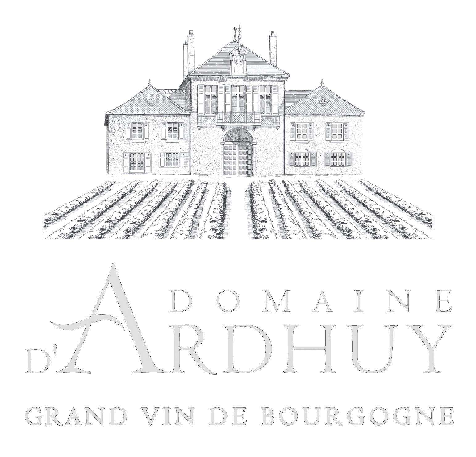 Domain Logo.png