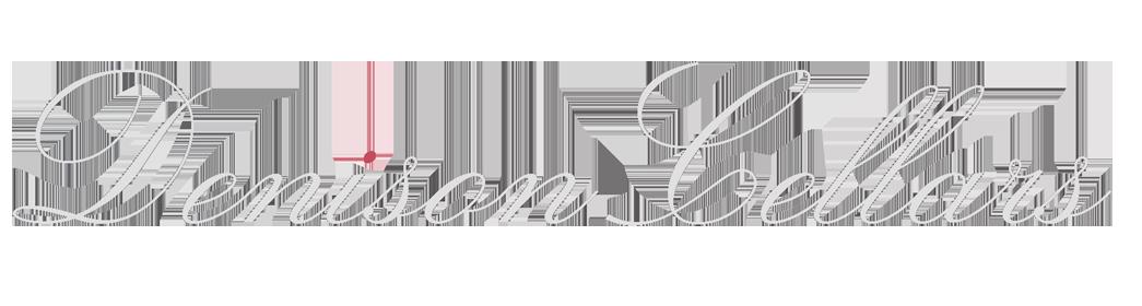 Denison Logo_2.png