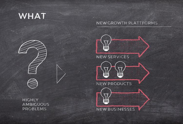 AUFGABE: Neues Wachstum schaffen