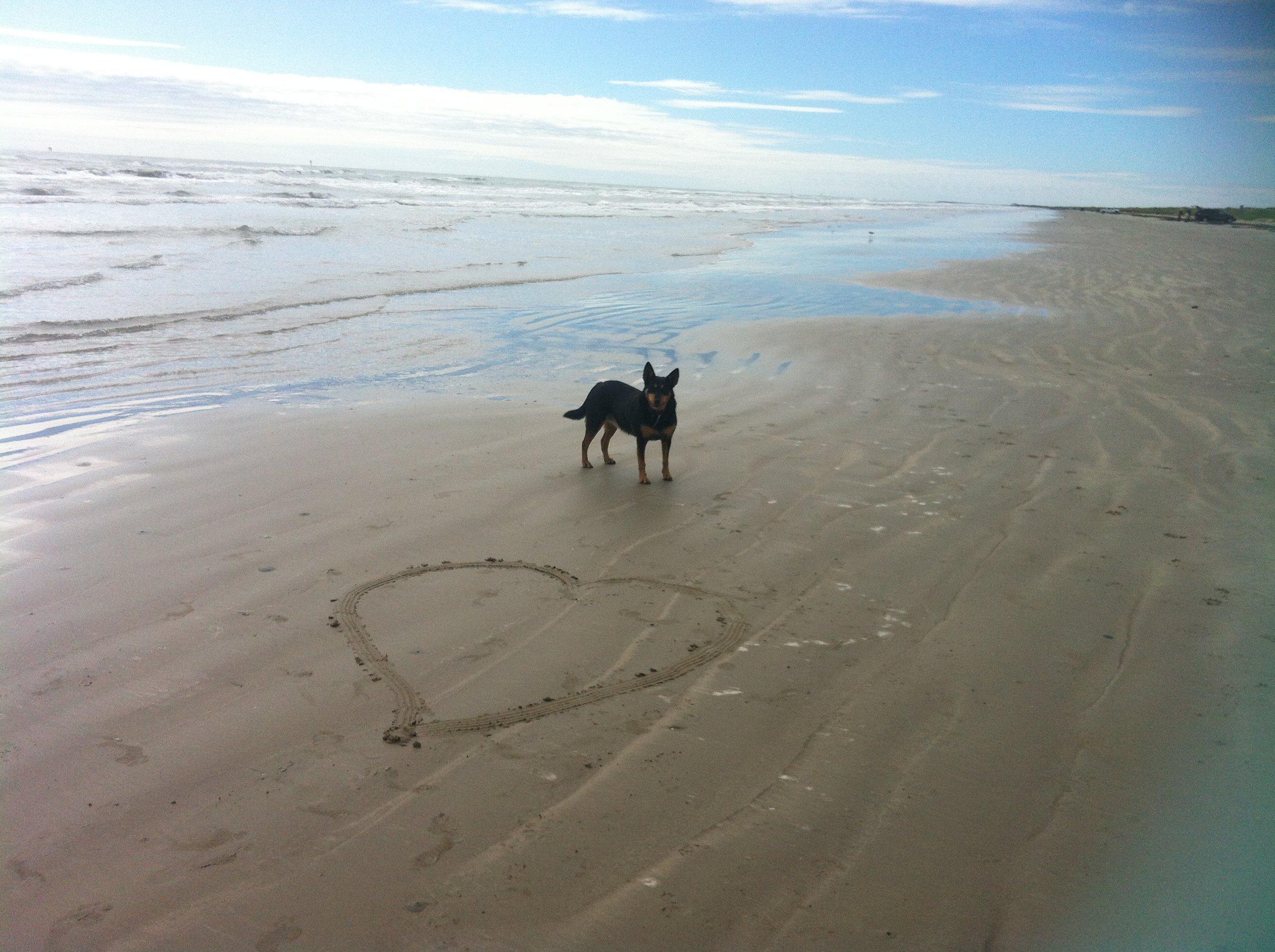 Po on Beach