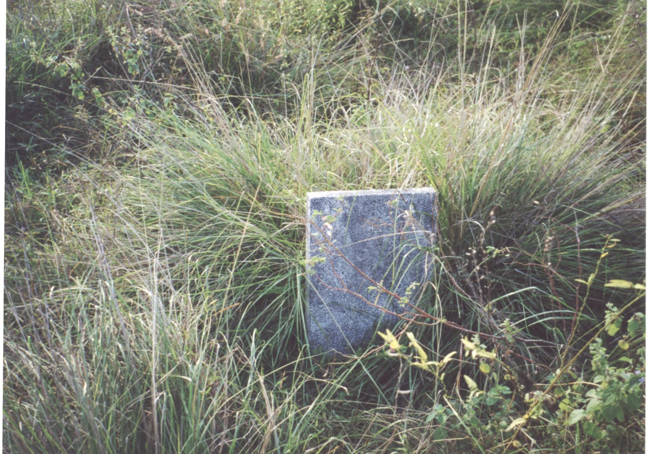 South VN Cemetery - Pre-Restoration 05.jpeg