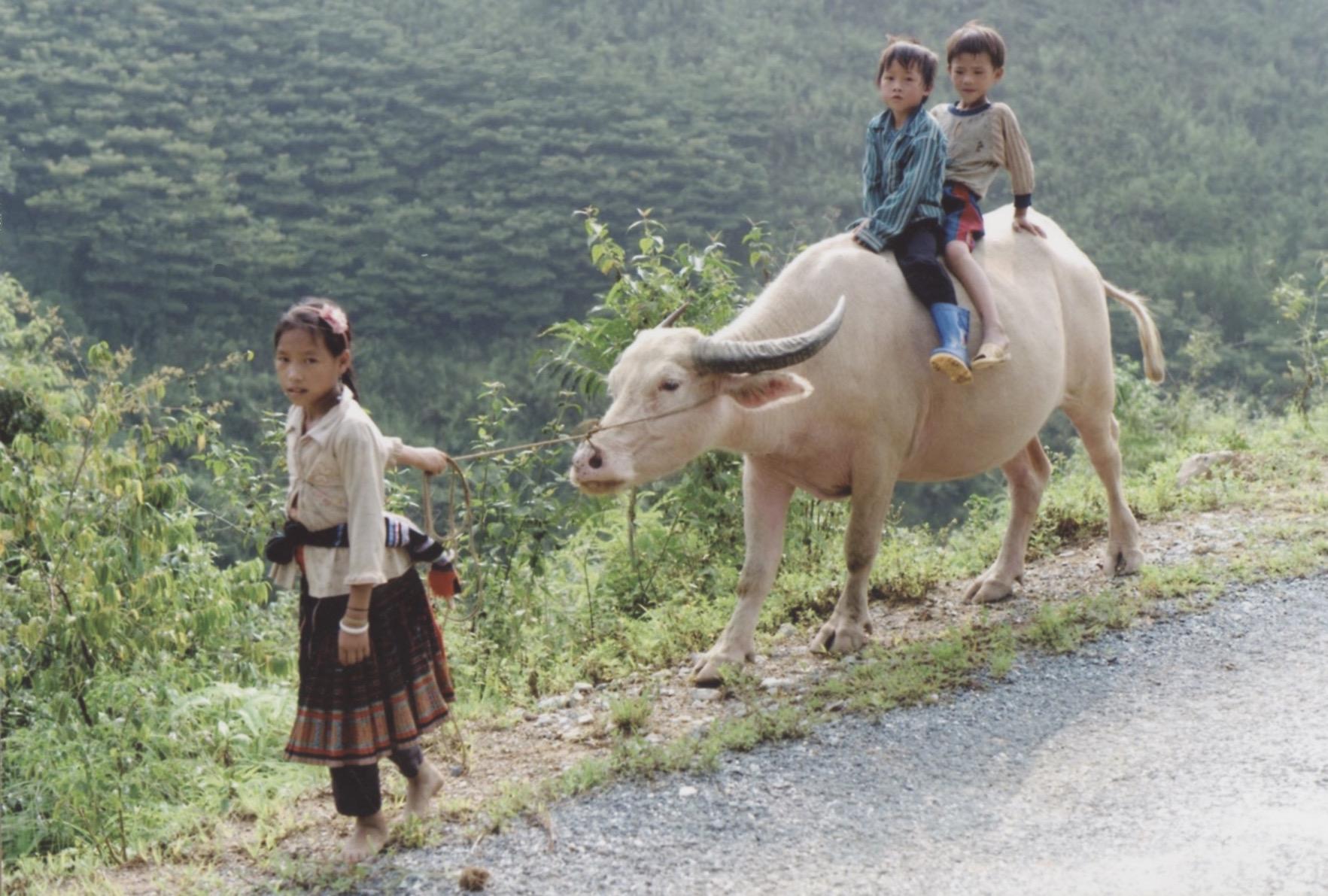 Co Tu Tribe in Kon Tum Province 9.jpeg