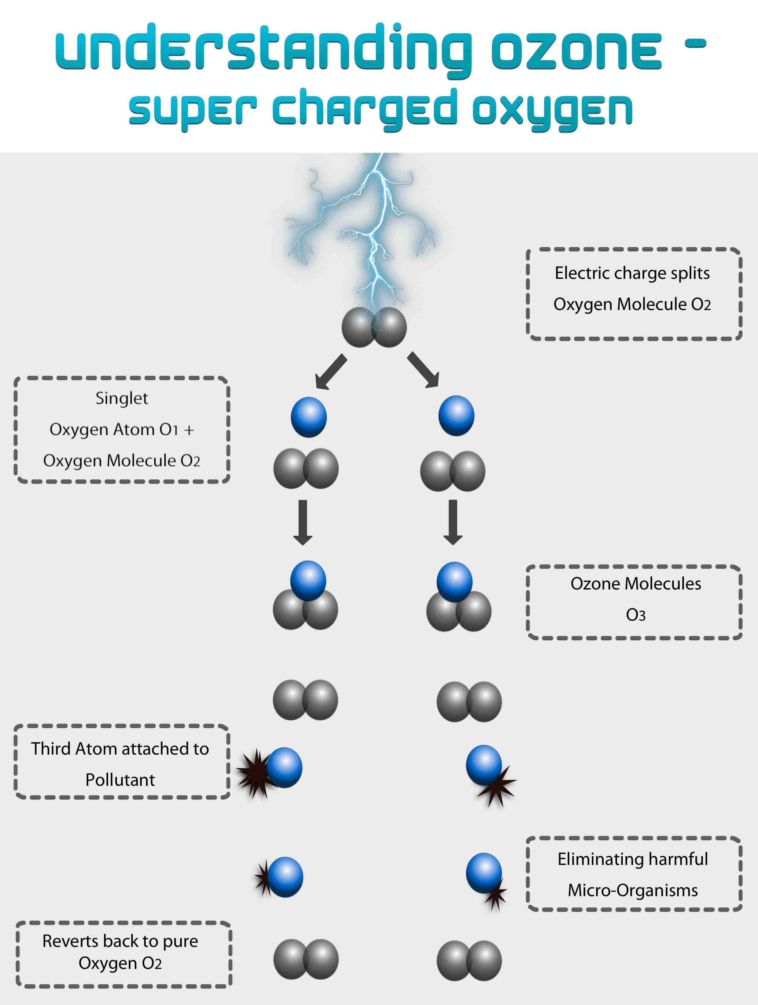 Understanding-Ozone-w-logo.jpg