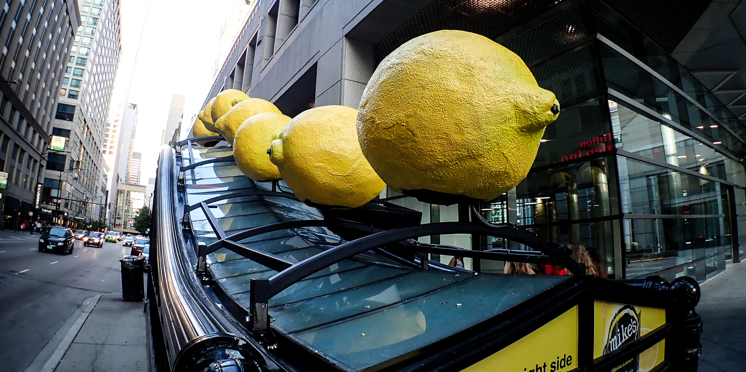 web_banner_Lemon.jpg