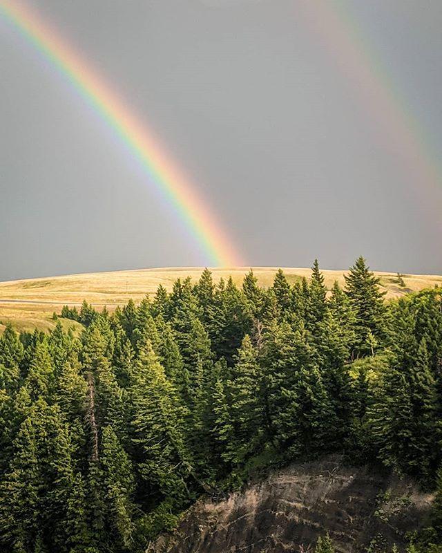 Moving Part 2  #trainsarecool #rainbows #doublerainbow #amtrak #empirebuilder #reflection #spaces #insideoutside