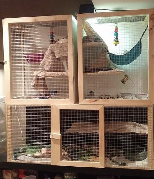 good rat cage