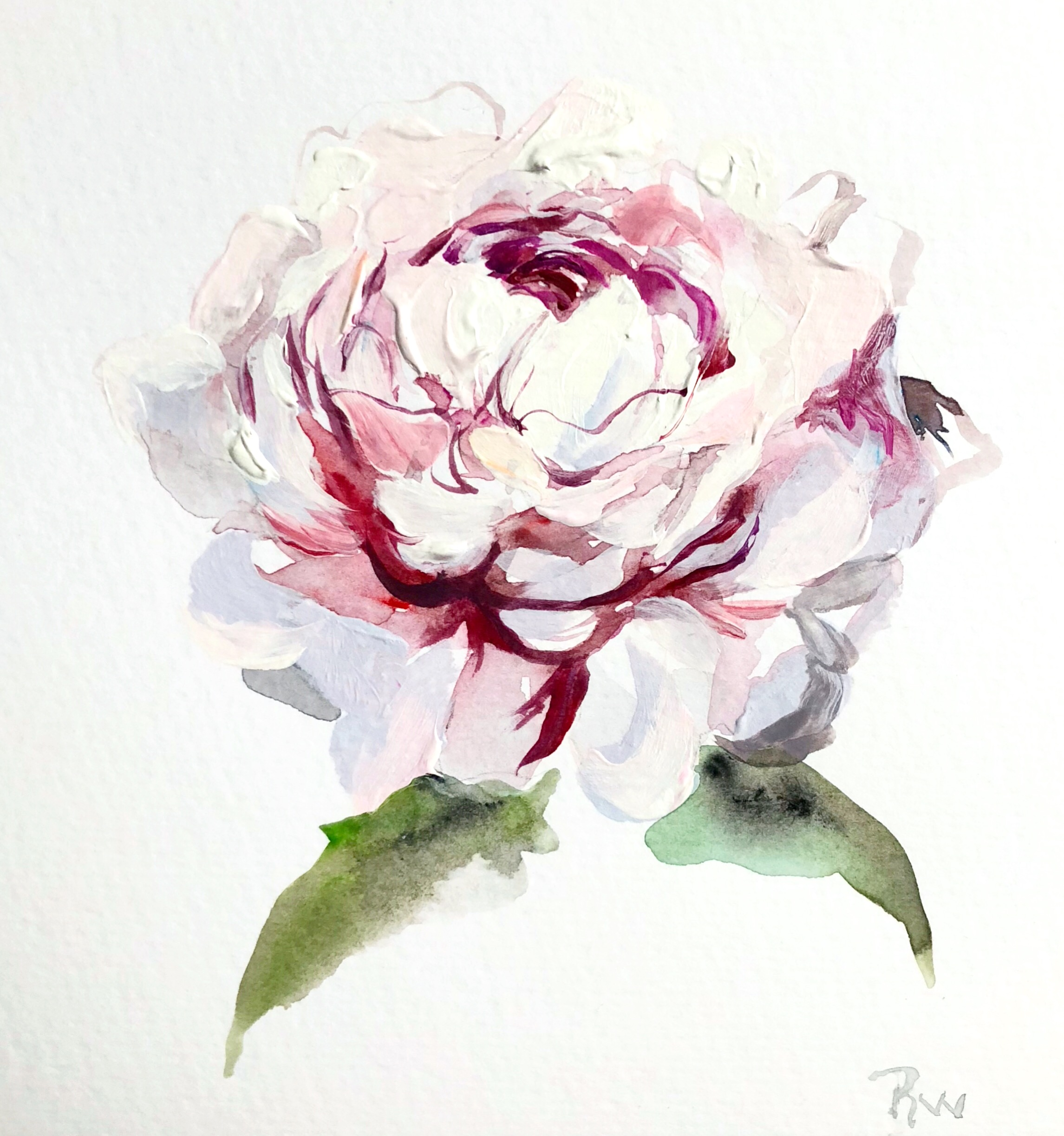 "Little Peony   6x6""  Acrylic on paper  Sold"