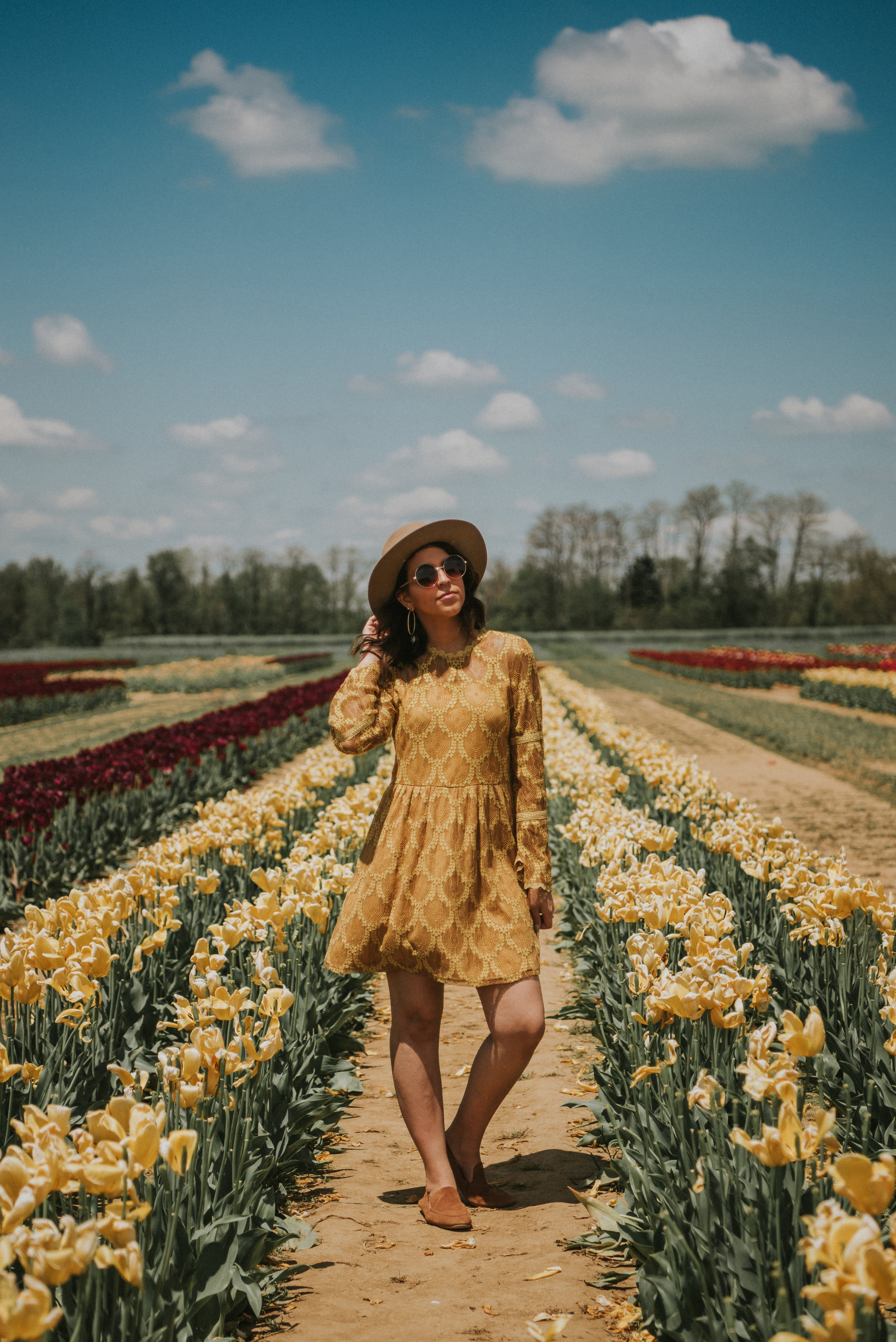 Tulips-28.jpg