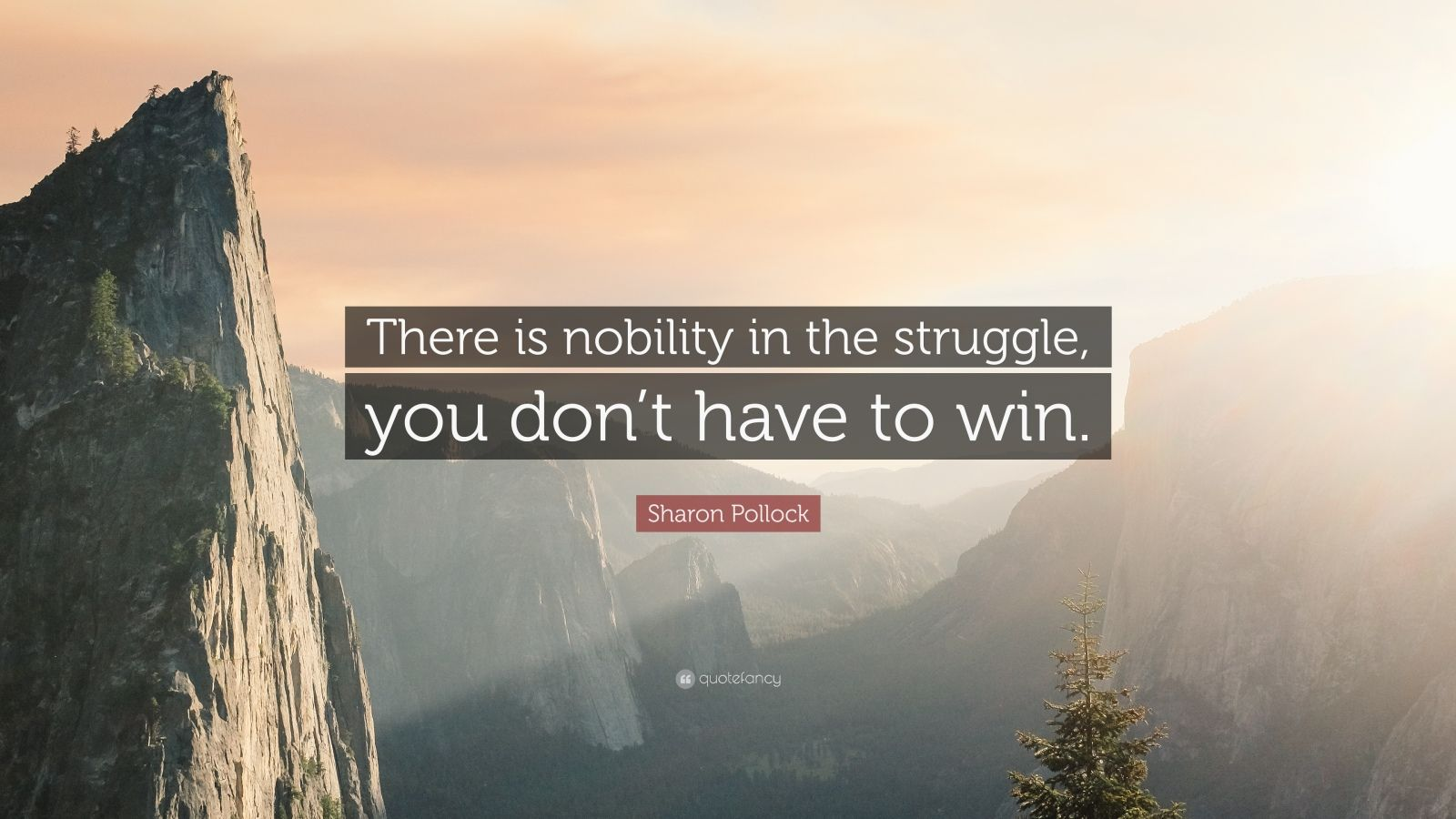 355069-Sharon-Pollock-Quote-There-is-nobility-in-the-struggle-you-don-t.jpg