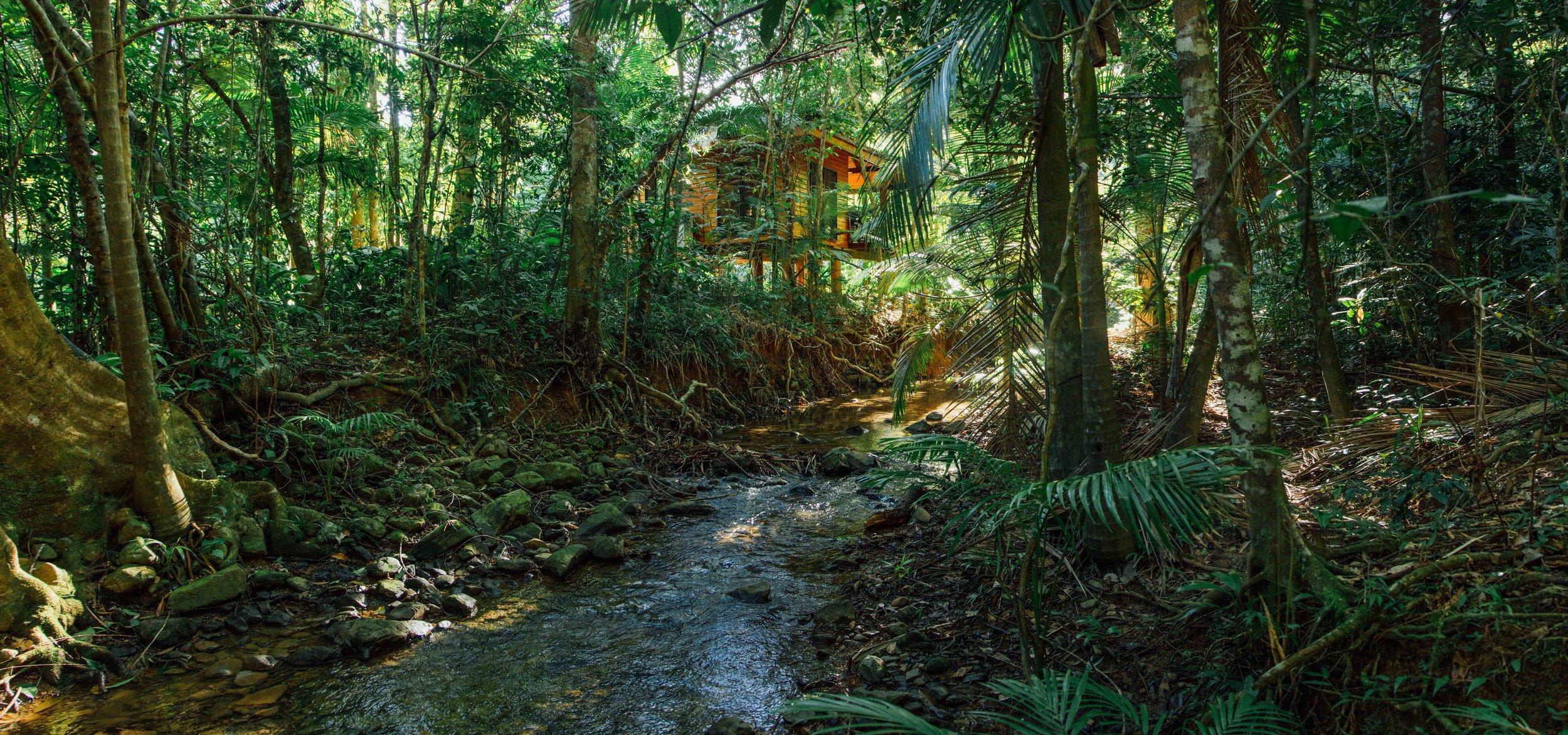 wildwood.cabin.creek