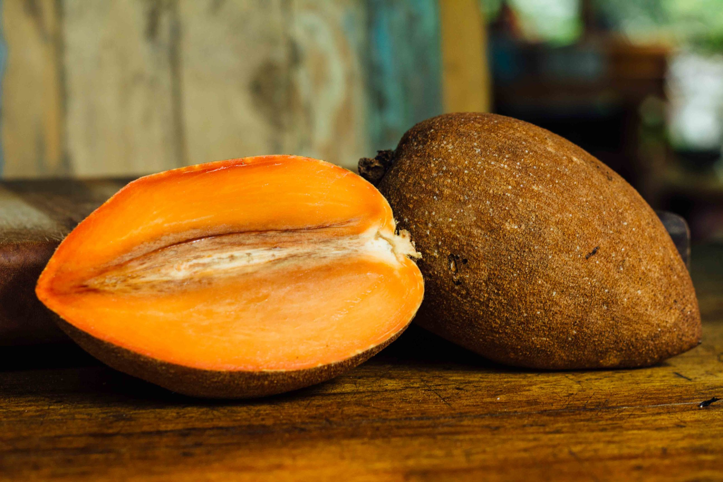 wildwood exotic fruit mamey sapote