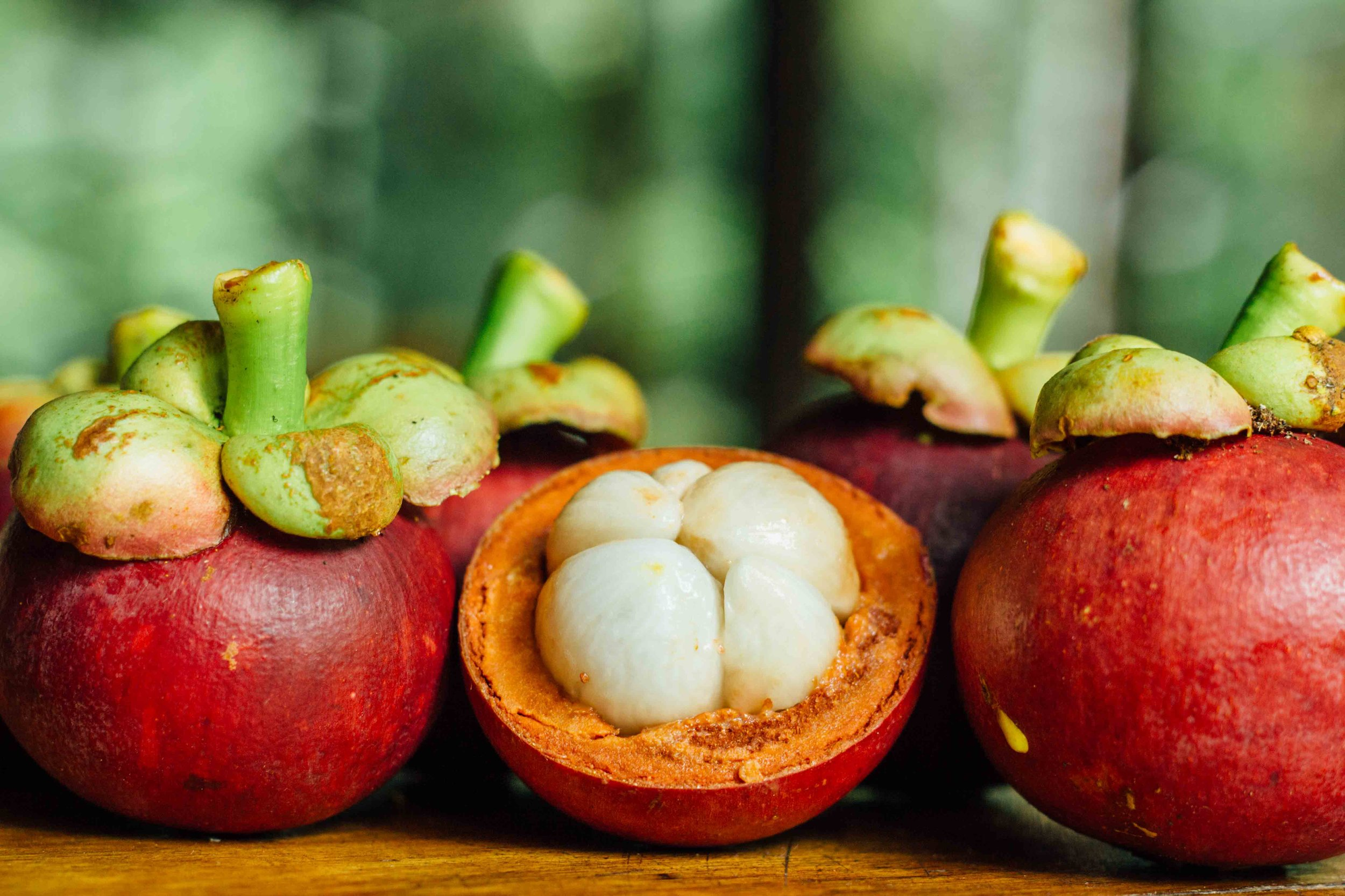 wildwood exotic fruit mangosteen