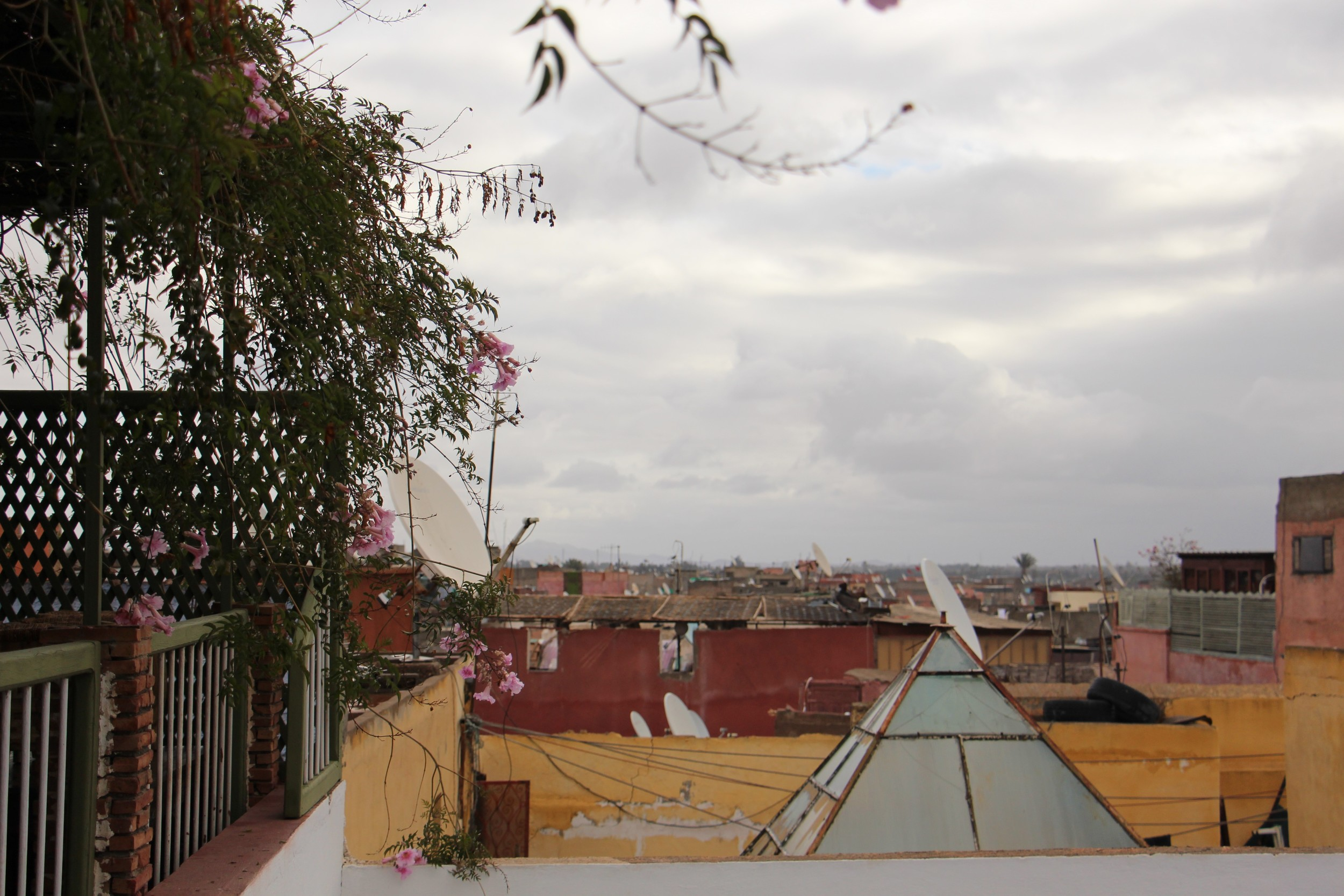 Photography museum rooftop