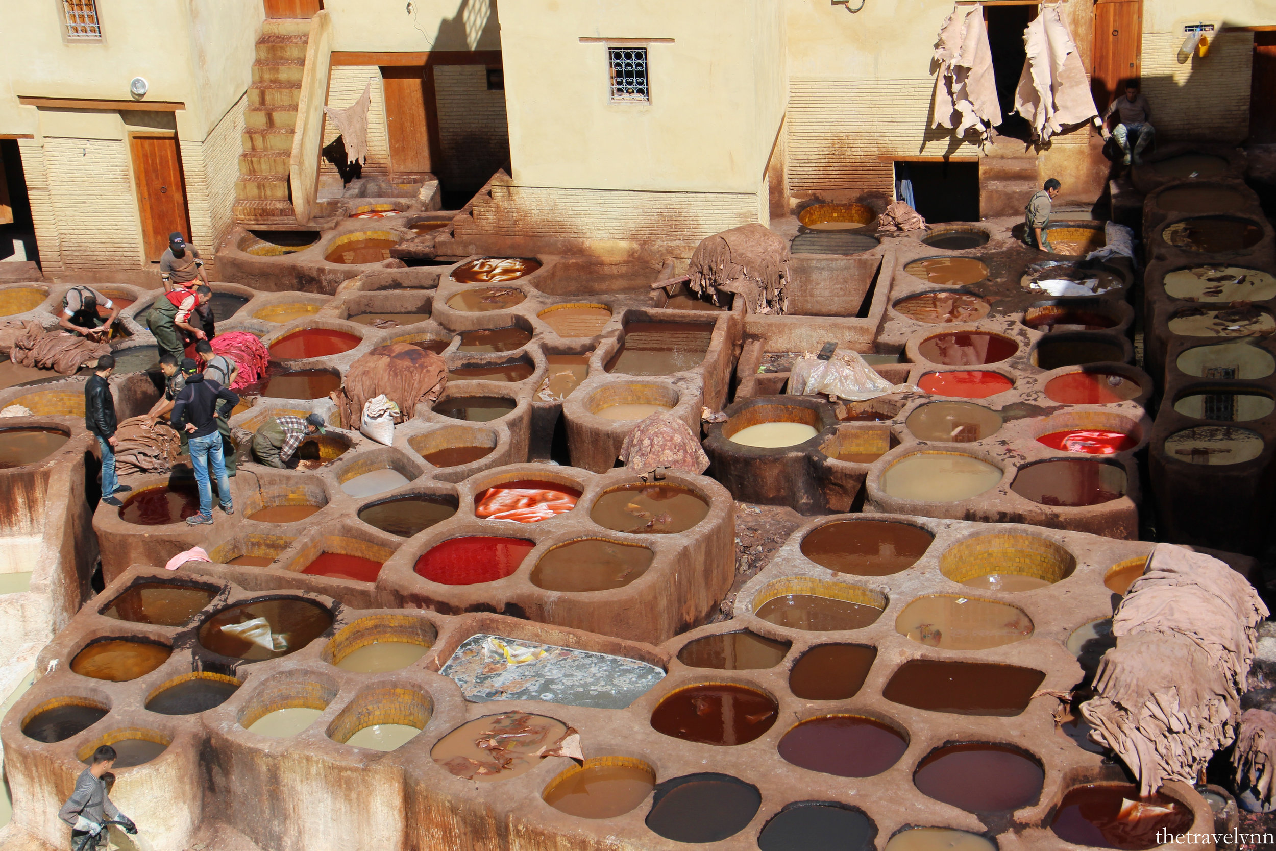 Fes guide tanneries