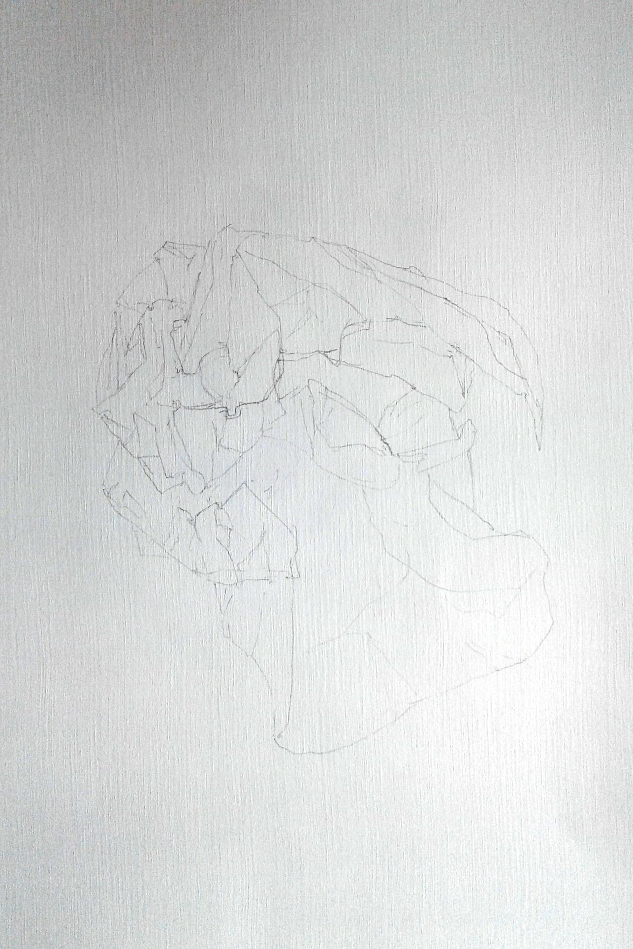 Fractured IV.jpg